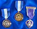 Three WSP Medal Awards